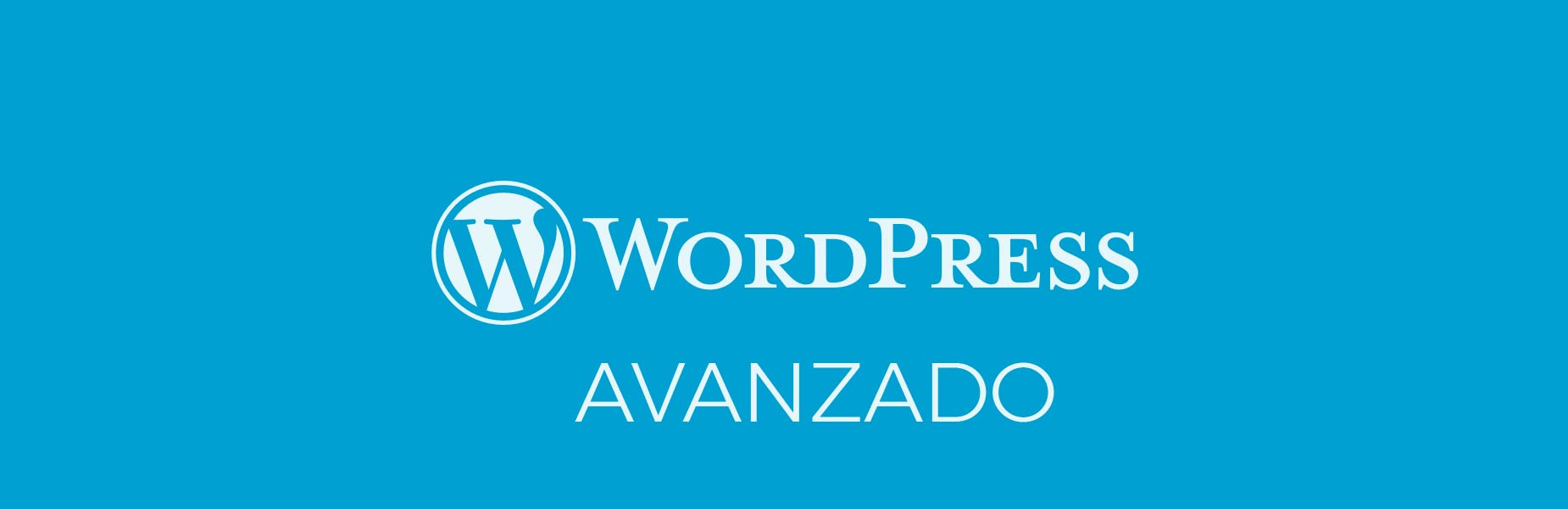 wordpress avanzado curso Web